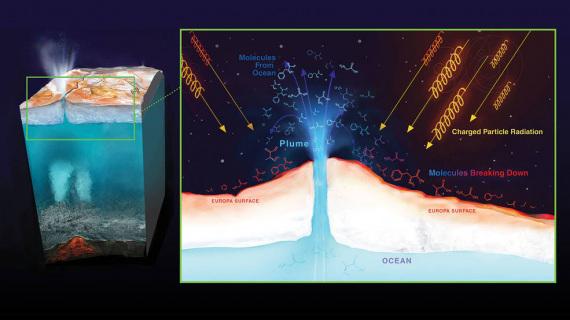 Le radiazioni provenienti da Giove possono alterare più o meno profondamente le eventuali molecole organiche che arrivano in superficie, falsando così i dati delle ricerche. | Nasa